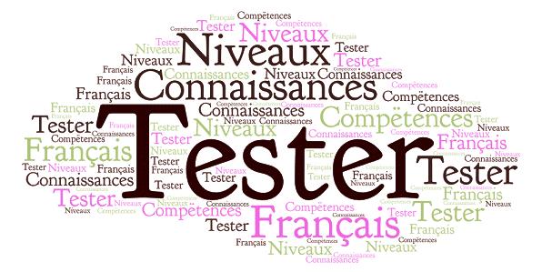 Tests de français, scealprod.fr, Scéal Studio