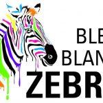 Scéalprod, plateforme d'apprentissage de l'écriture pour les 10-16 ans, membre du réseau Bleu blanc zèbre.